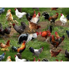 Farm Animals ES354 hens