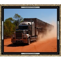 Road Trains 6037-12 panel