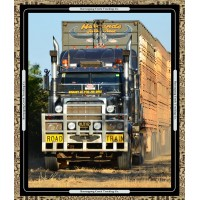 Road Trains 6037-13 panel