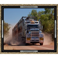 Road Trains 6037-25 panel